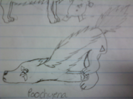 Poochyena Pose Scetch by DynamicDeliveries