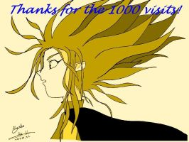 Thanks for 1000 pageviews by sakivibe