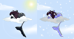 INaLS - Summer and winter by Huispe