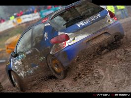 Peugeot 206 rally by MatonUS