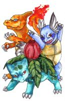 PKMN: The first starter trio by Fjodor