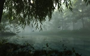 Under The Willow Tree by pdeck