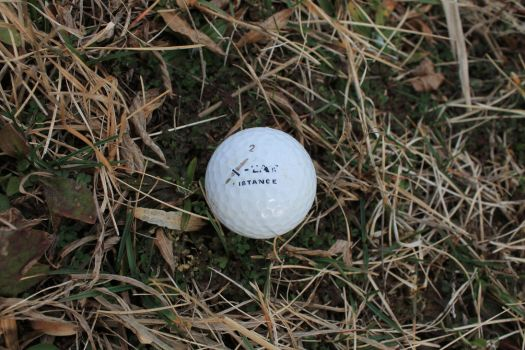 The Lost Golf Ball: A Pretentious Still Life by StalwartPhobos128