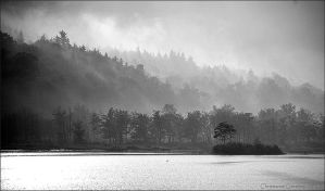 Rising Mist Black and White by scootergirl762