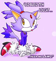 Blaze The Lolcat by makotomikami