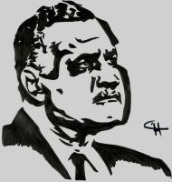 Gamal ABdel Nasser by Ahmed-A73