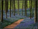 The blue forest by rhipster