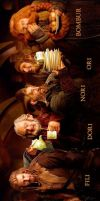 The Hobbit: another point of view by Nhyms