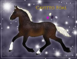 My first cavitto by SLEC-EqIsMyLife