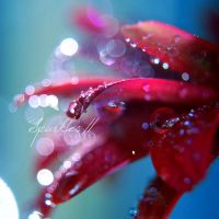 Sparkles II by Jules1983