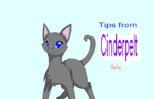 Tips from Cinderpelt: Herbs by lexyrb
