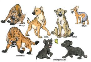 Design of new hyena chars by Anatoliba