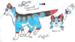 Chipo Reference Sheet by Th3Frgt10Warrior