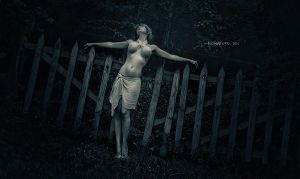Gates to me by fionafoto
