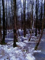 Iced Swamped by NiDiMe