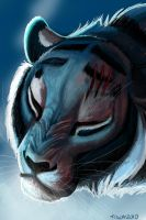 Cold Tigon by tigon