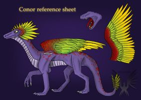 Conor Ref sheet by Virensere