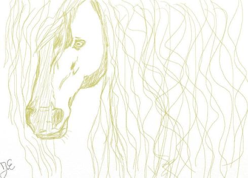 Horse Practise I by Shadows-in-Heart