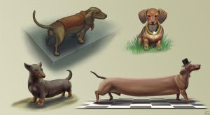 Dachshunds by DenzelAJackson
