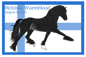 The Helsinki Warmblood Import ID 053# by LiaLithiumTM