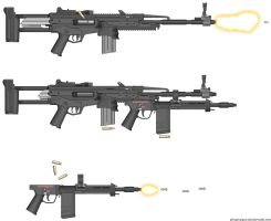 Hold out DMR with  ZERG Raider SMG by GeneralRich