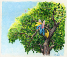 Up a Tree by SynCallio