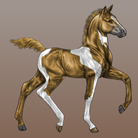 Foal Design II by RvS-RiverineStables