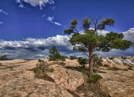 El Morro National Monument two by scottsmith17