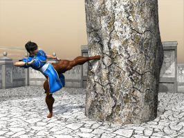 For sky:chun li training by bigpr0n