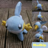 Mudkip by teacupwithtentacles