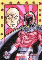 Professor Xavier and Magneto by ayersart
