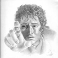 Frodo's Ring by PZB