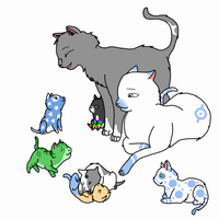 Kitten Adoptables! by silverpiano23