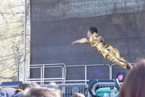 2016 Japanese Fest/Boston Common, Gold Dancer 19 by Miss-Tbones