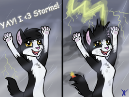 I Love Storms by BluTwistar