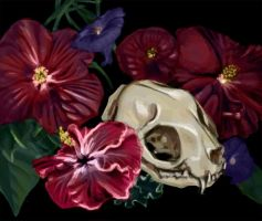 Hibiscus Flower and Cat Skull by KaylaSmith722