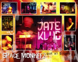Space Monkeez Live Act by vikingexposure