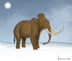 Woolly Mammoth by Louisetheanimator