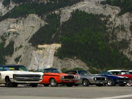 swiss best by AmericanMuscle
