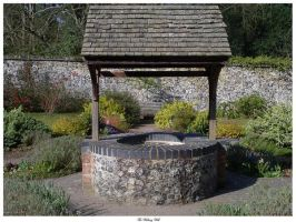 The Wishing Well by In-the-picture