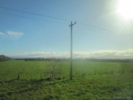 An Electrical Pole in Paradise by RadenWA