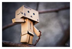 Old Danbo by Robinours2b