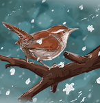 Wren's Winter by Alerane