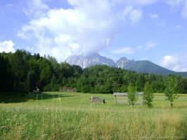 Country Scene by weida34