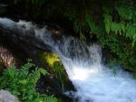 Bottom part of waterfall by Suivien