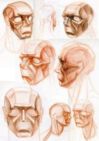 Planes of the Head by hakepe