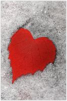My heart belongs to you... by Frider