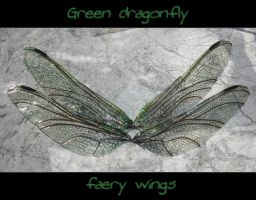 Elegant dragonfly wings by S0WIL0