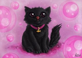 Miaou... by antilul