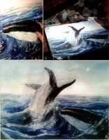 Whales by SurgeonWolf